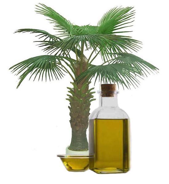 Пальмовое масло применение в домашних условиях